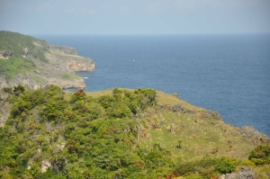 Look at how beautiful life is in Torongan Hills