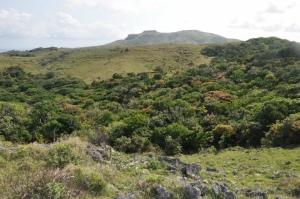 View of Torongan Hills